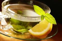 Чай мяты Стоковые Изображения RF