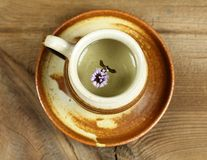 Чай мяты Стоковые Фото