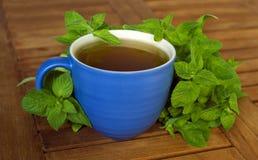 Чай мяты Стоковое Изображение