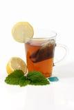 чай мяты стоковое фото