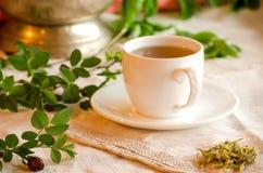 Чай обработки травяной Чай плода шиповника Стоковые Фотографии RF