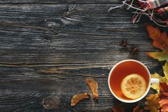 Чай осени горячий с лимоном стоковые изображения rf