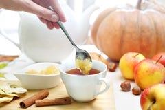 Чай осени с высушенным яблоком и ручкой циннамона стоковые изображения