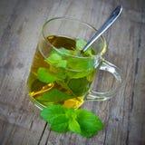 Чай пипермента Стоковые Фотографии RF