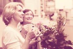 Чай питья 2 женщин на балконе Стоковое Изображение
