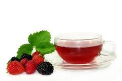 чай плодоовощ пущи стоковое изображение