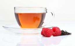 чай поленики чашки Стоковое Фото