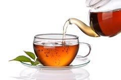 чай политый чашкой Стоковые Изображения