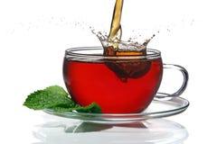 чай принципиальной схемы Стоковые Изображения