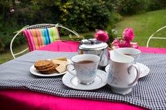 чай приём гостей в саду Стоковые Изображения RF