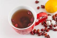 Чай плода шиповника с лимоном Стоковое фото RF