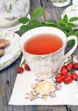 Чай плода шиповника чашки Стоковая Фотография