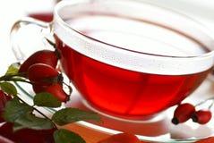 Чай плода шиповника Стоковое Изображение RF