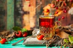 Чай плода шиповника Стоковая Фотография RF
