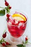 Чай розового бедра Стоковые Фото