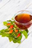 Чай розового бедра Стоковое Фото