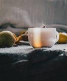 Чай, ручки циннамона, булочки, груши, анисовка звезды и хурмы Стоковые Фото