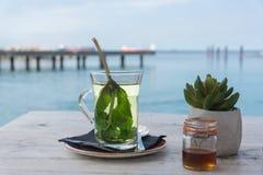 Чай свежей мяты с медом стоковое фото rf