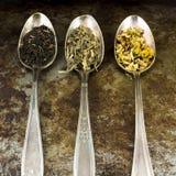 Чай свободных лист Стоковые Фото