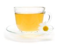 Чай стоцвета при цветок стоцвета изолированный на белизне стоковые фотографии rf