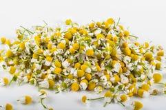 Чай стоцвета с медом Стоковая Фотография RF