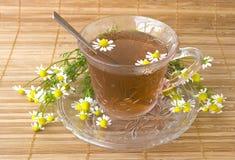 чай стоцвета Стоковая Фотография RF