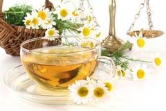 чай стоцвета Стоковые Фото