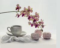 Чай с зефирами и орхидеей Стоковое Изображение
