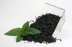 Чай с мятой стоковое изображение rf