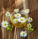 Чай с стоцветом Стоковая Фотография RF