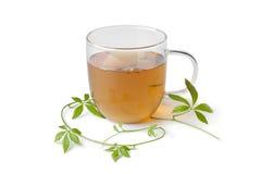 чай травы чашки jiaogulan Стоковые Фото