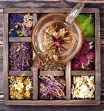 Чай травяного и цветков и высушенные травы и цветки в деревянной коробке Стоковые Фото