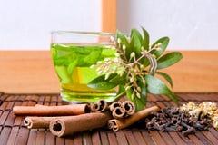 чай трав стоковое фото rf