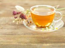 чай утра солнечный Стоковая Фотография