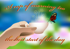 Чай утра с пособиями по болезни Стоковое Фото