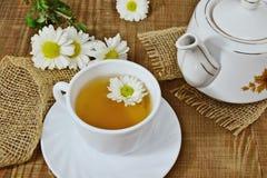 Чай хризантемы травяной в белых чашке и чайнике Стоковое фото RF