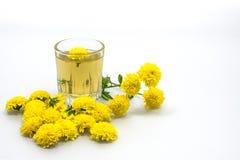 Чай хризантемы Стоковая Фотография