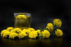 Чай хризантемы Стоковое Фото