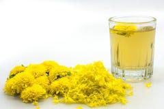 Чай хризантемы Стоковые Изображения