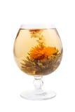 чай цветка стеклянный зеленый Стоковая Фотография