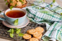 чай чашки зеленый Чашка чаю с круглым печеньем на зеленой linen checkered салфетке и винтажным железным подносом, листьями зелено Стоковая Фотография