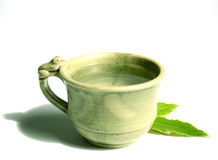 чай чашки свежий Стоковое Изображение RF