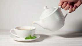Чай чашки с мятой акции видеоматериалы