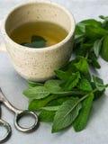 чай чашки травяной Стоковая Фотография RF