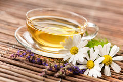 чай чашки травяной Стоковое фото RF