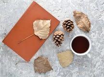 Чай читая книгу Чай, книга, упаденные листья, bumps на конкретной таблице Атмосфера зимы осени для читая рассказа Стоковое Изображение