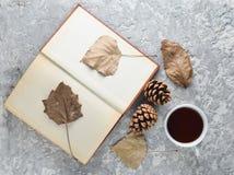Чай читая книгу Чай, книга, упаденные листья, bumps на конкретной таблице Атмосфера зимы осени для читать новый рассказ Стоковые Изображения
