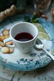 Чай ягоды с известкой и печеньями Стоковое Фото