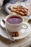 Чай ягоды с известкой и печеньями Стоковые Изображения