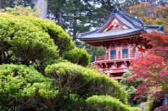 чай японца сада Стоковая Фотография